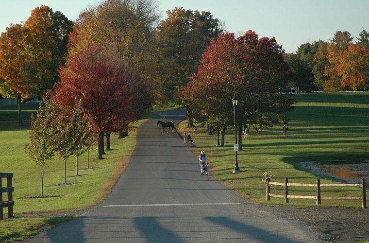 保山中医药高等专科学校五年制大专学校网址