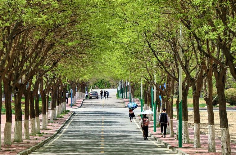 北京师范大学继续教育学院影视专业教学基地