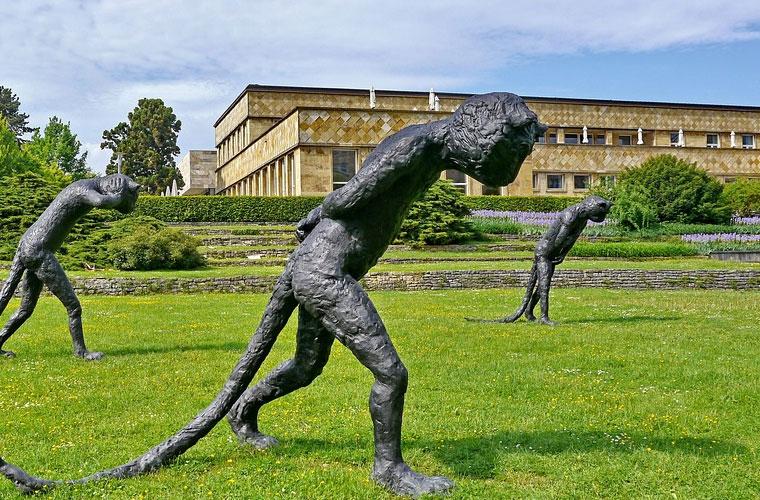 杭州商贸职业高级中学招生简章及招生计划